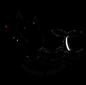 Pearly Beach Horse Trails logo