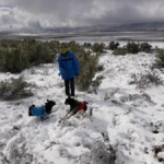 Playing in the snow in South Africa