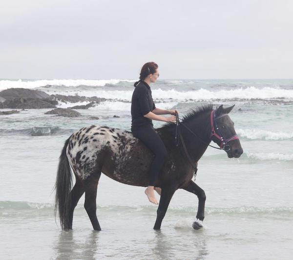 Pearly Beach Horse Trails horse called Corona