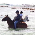 Riding horses in the water at Pearly Beach