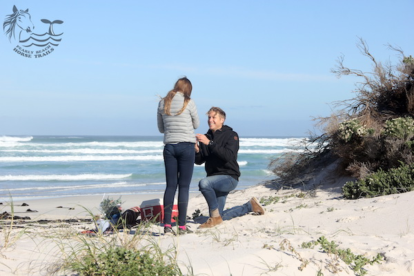 Proposal on Pearly Beach