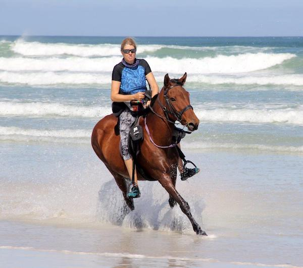 Pearly Beach Horse Trails horse called Kimo